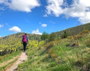 Hiking in the Black Forest in Germany