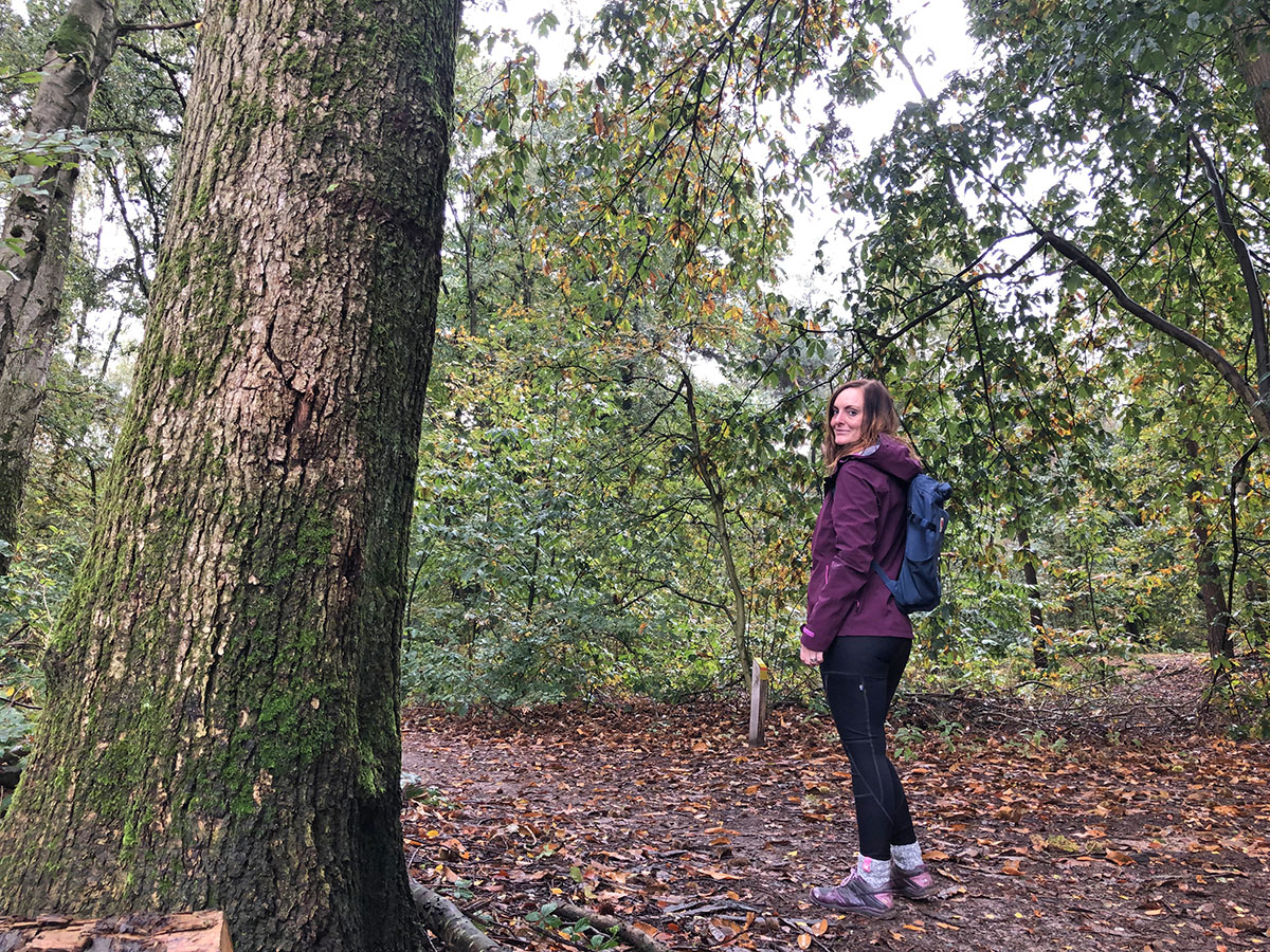 mooiste herfstwandelingen in nederland