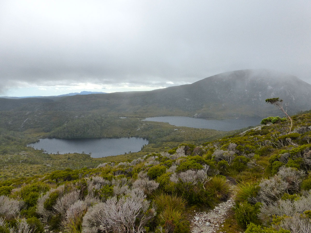 Day 1 of the Overland Track