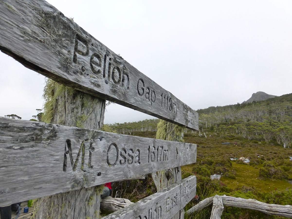 Mount Ossa climb on the Overland Track