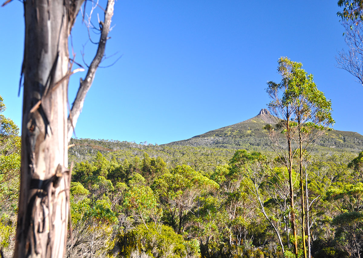 The Overland Track in Tasmania