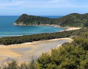 New Zealand 2019 week 1 – arrival and Abel Tasman