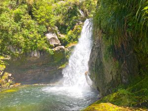 Wainui Falls Walk – the best short walk in Golden Bay