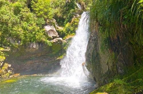 Wainui Falls Walk