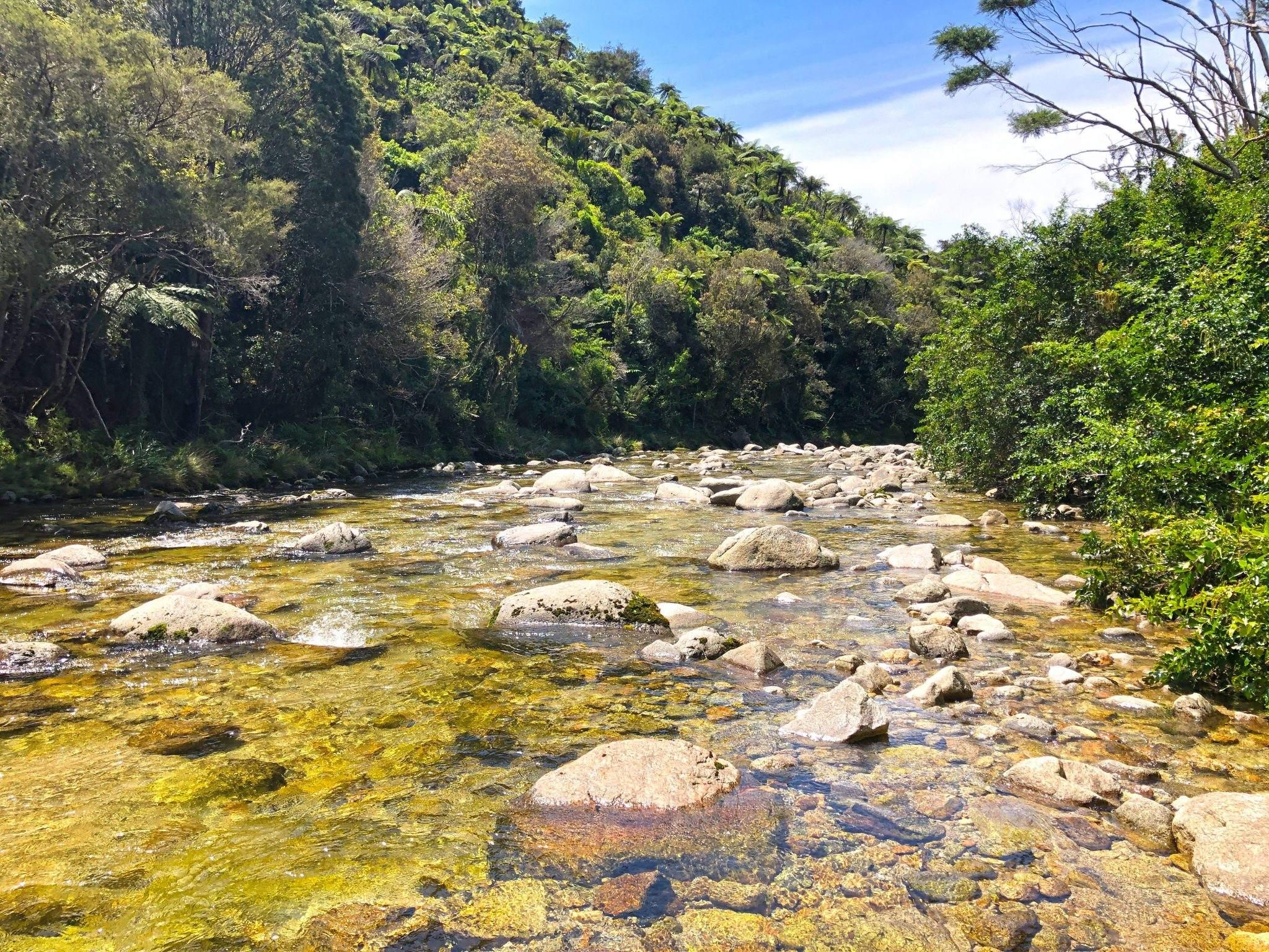 Wainui River