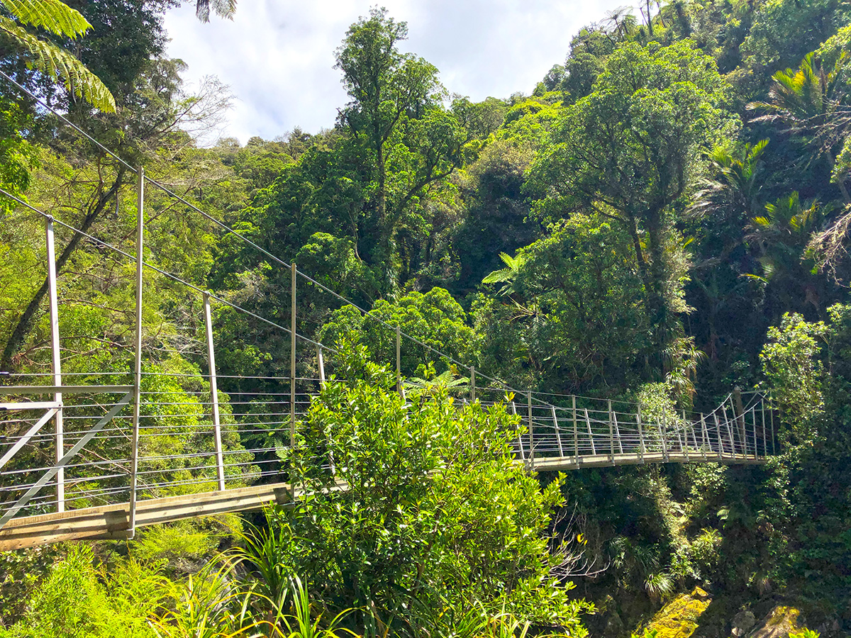 Wainui Falls swingbridge in Abel Tasman Nationaal Park