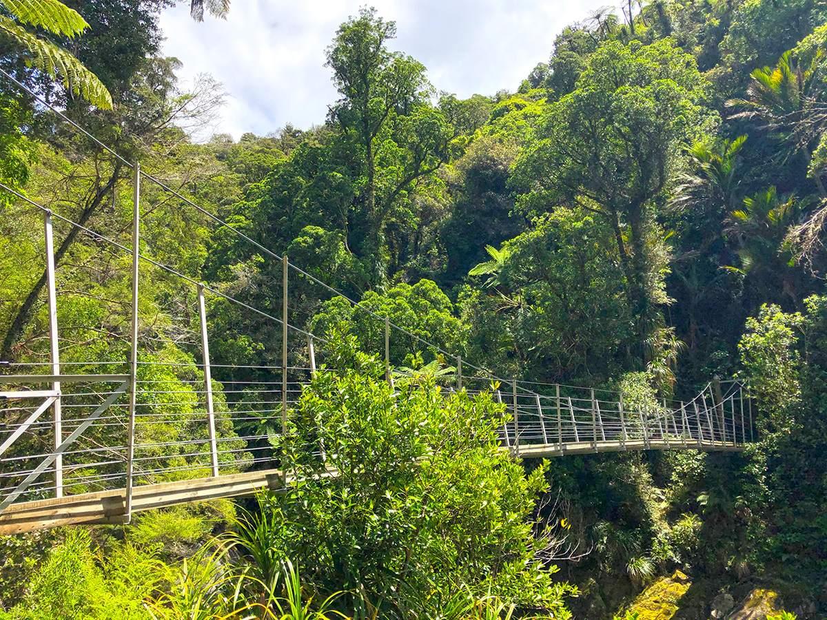 Wainui Falls swingbridge in Abel Tasman Nationaal Park
