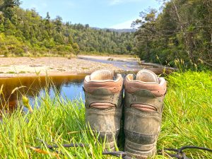 New Zealand 2019 week 3: the Heaphy Track