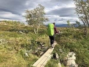 Hoe een beer ons liet schrikken in Vålådalen Natuurreservaat, Zweden