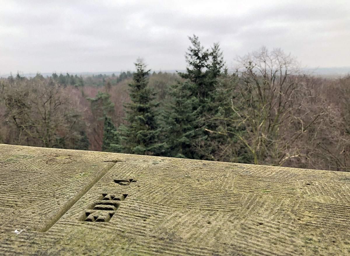 Uitzicht vanaf de Koepel middelpunt van Nederland