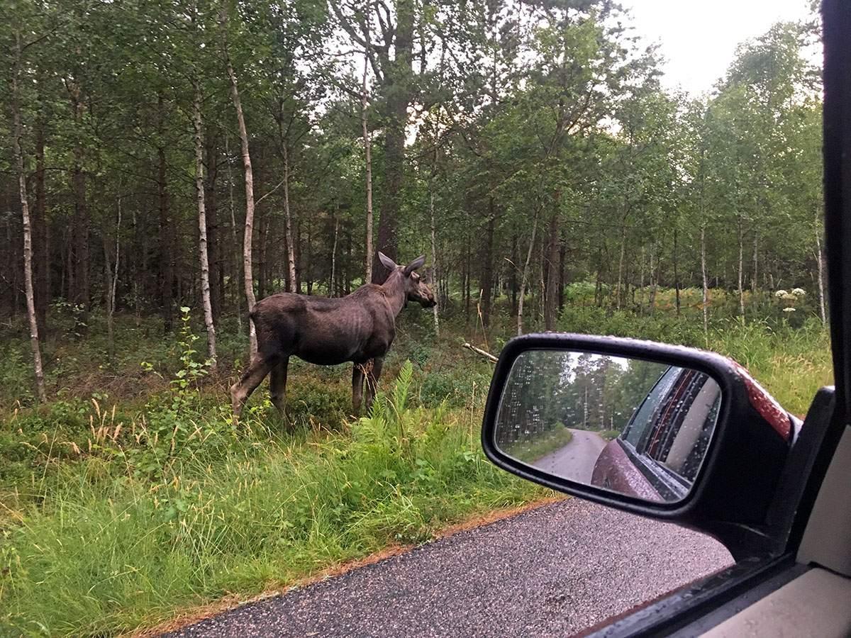 Leukste steden in Zweden - Trollhättan