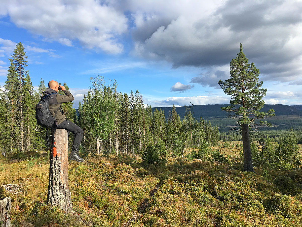 David op zoek naar beren bij Dalsvallen