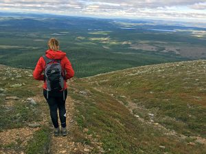 Sonfjället National Park in Sweden: bears and a mountain