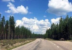 Met de auto naar Zweden: dit moet je weten voor je vertrekt!