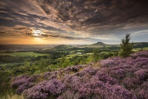 Wandeltip: hiken in de Tees Valley in Engeland