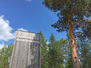 Fulufjället National Park in Zweden: onze tips!