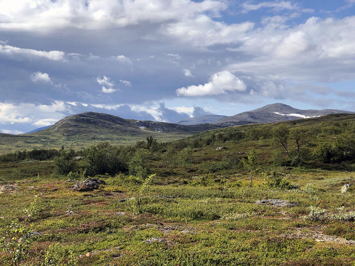 Vålådalen Nature Reserve