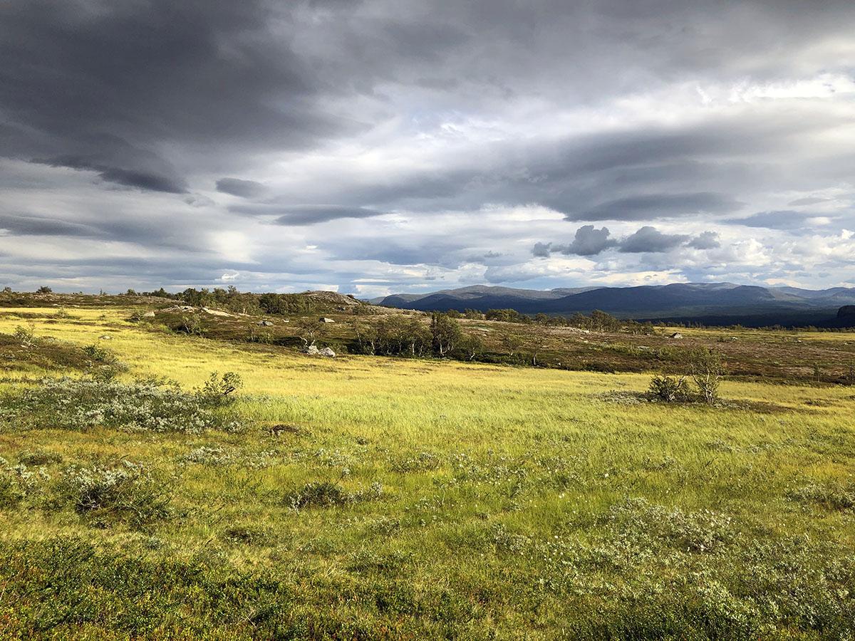 Landschap in Vålådalen