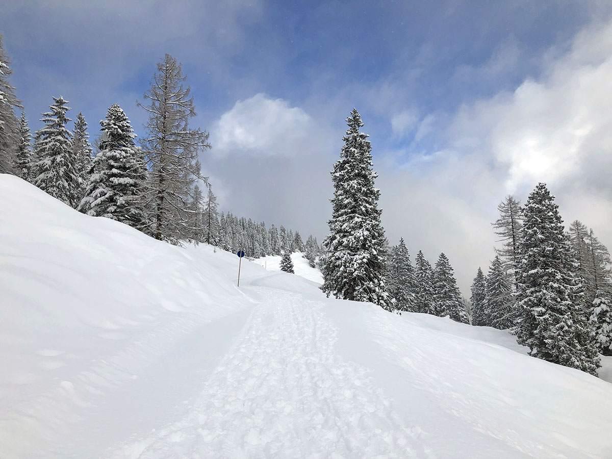 Wandelen over de Natursprünge-Weg