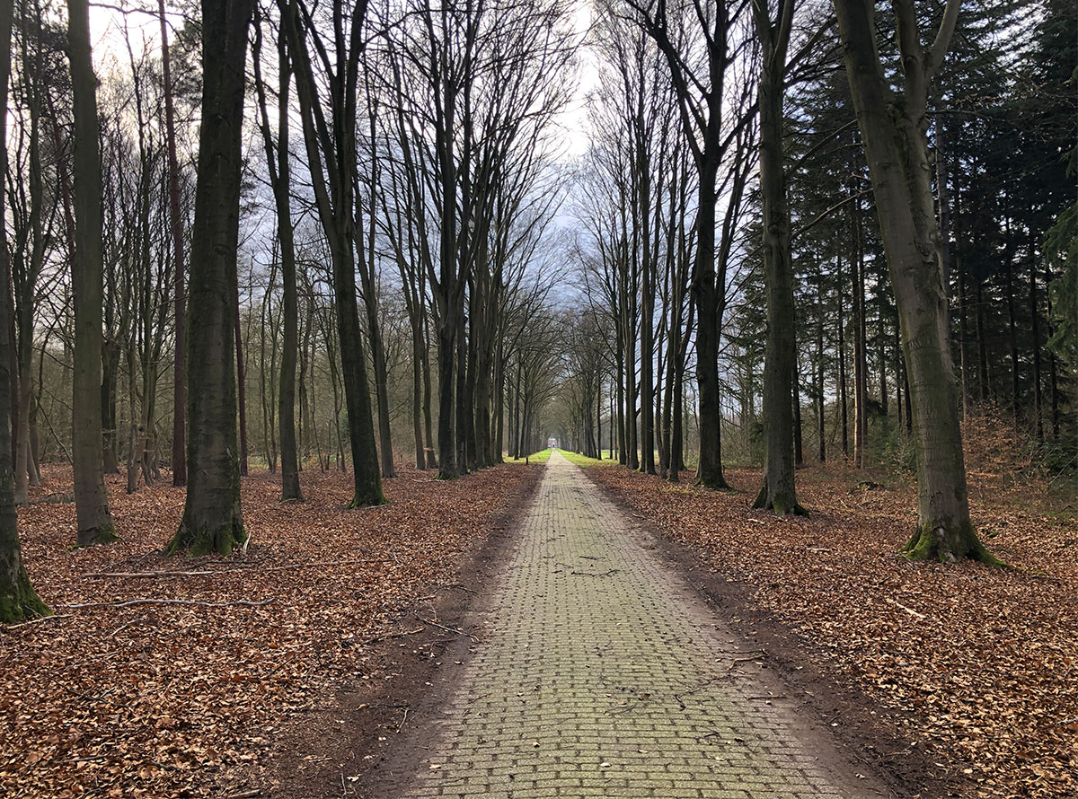 Laan naar Kasteel Slangenburg
