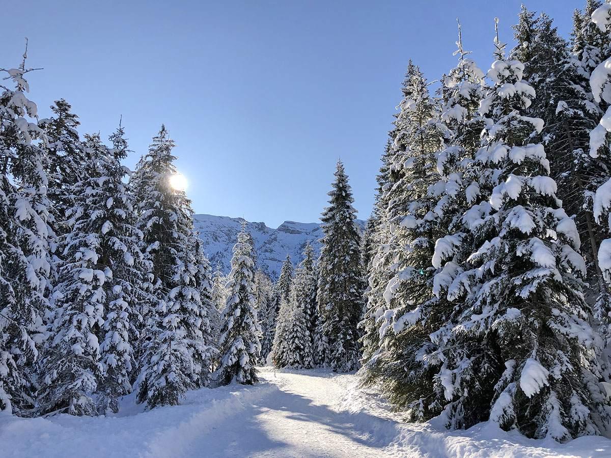 Winteractiviteiten Achensee