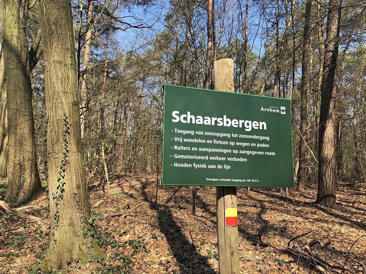 De rustige bossen bij Schaarsbergen op het Veluwe Zwerfpad etappe 1
