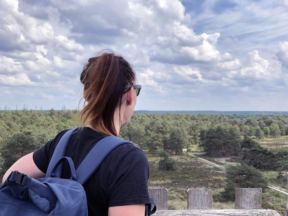 Het uitzicht over de Elspeetsche Heide