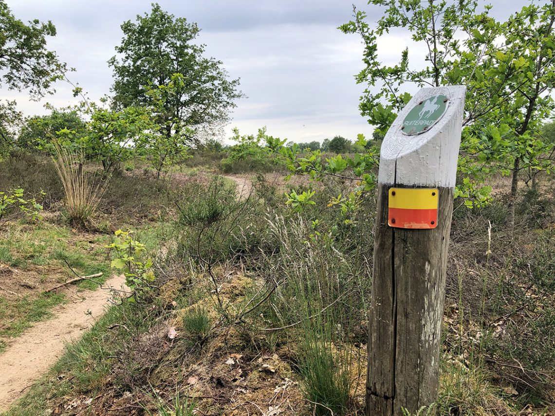 Veluwe Zwerfpad etappe 8 Ermelose Heide