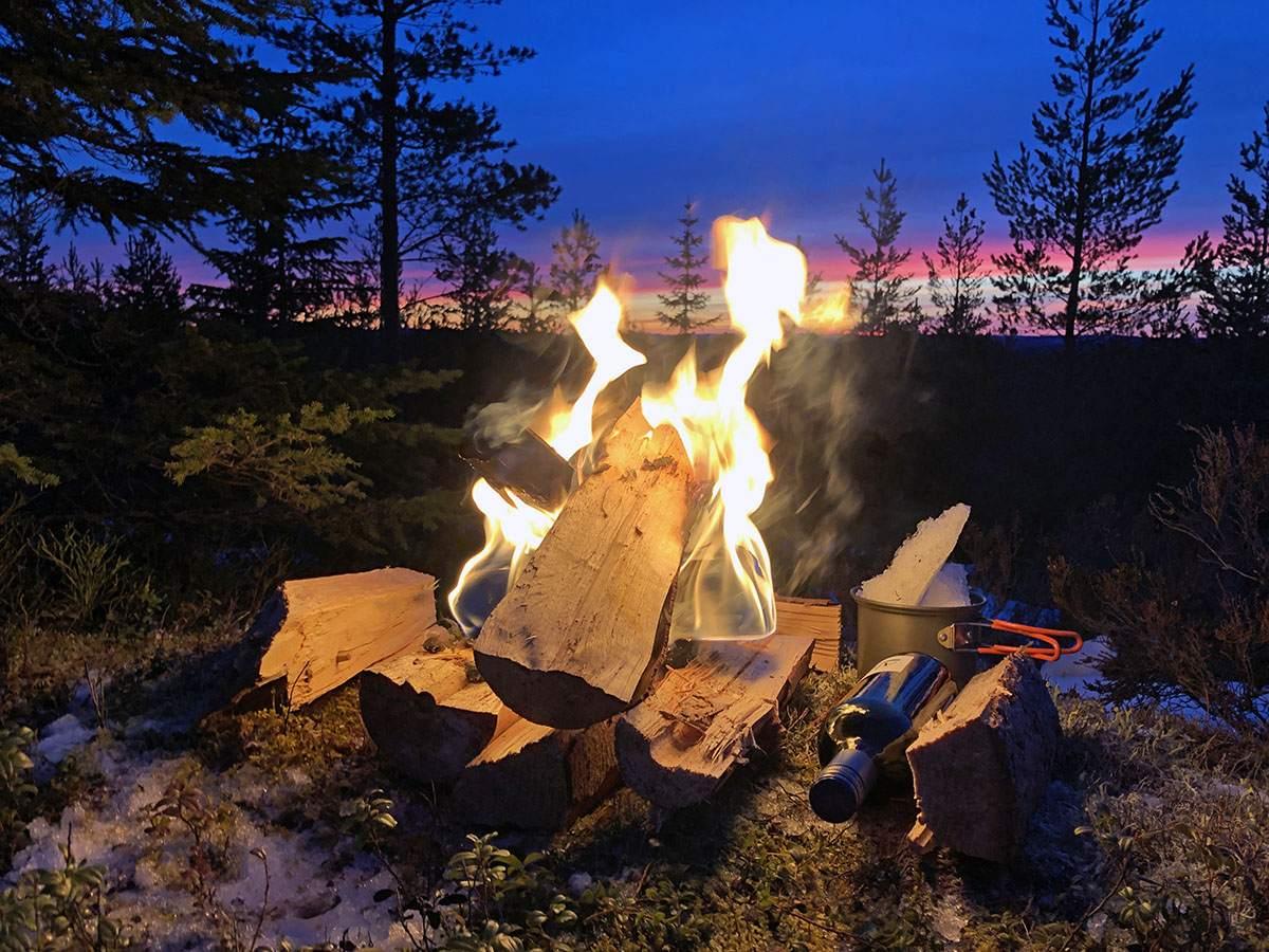Wildkamperen in Zweden