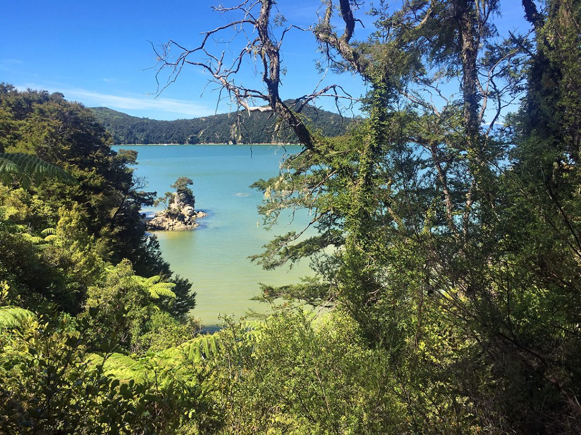 Abel Tasman National Park day walks