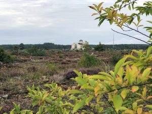 Veluwe Zwerfpad etappe 13: Kootwijk – Hoenderloo