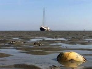 Running aground on the Wadden Sea