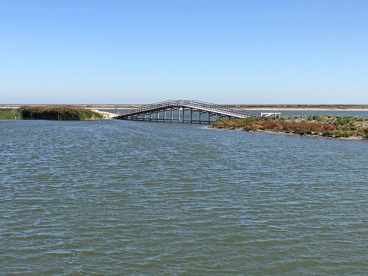 One of the bridges on the Marker Wadden