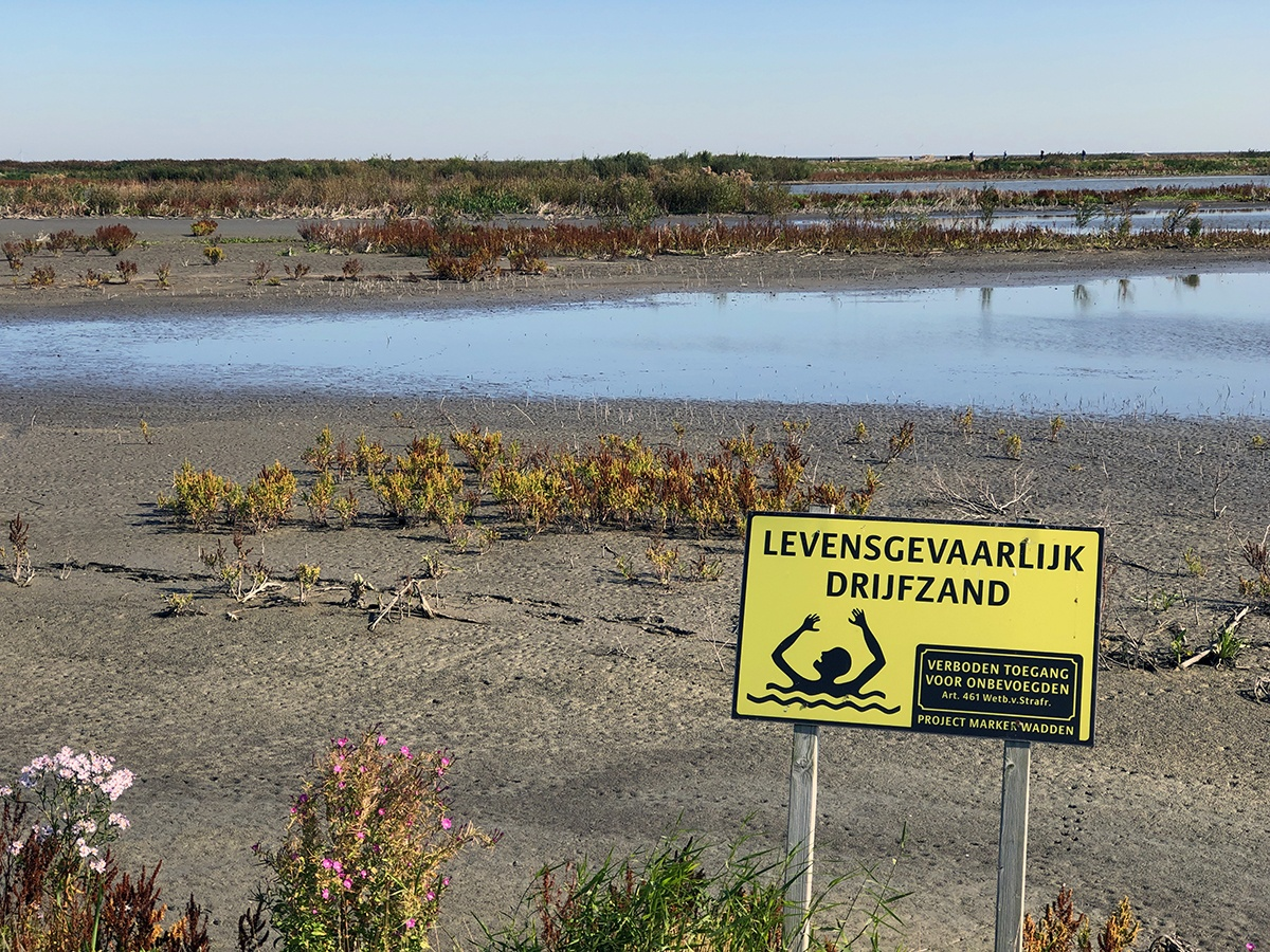 Watch out for quicksand