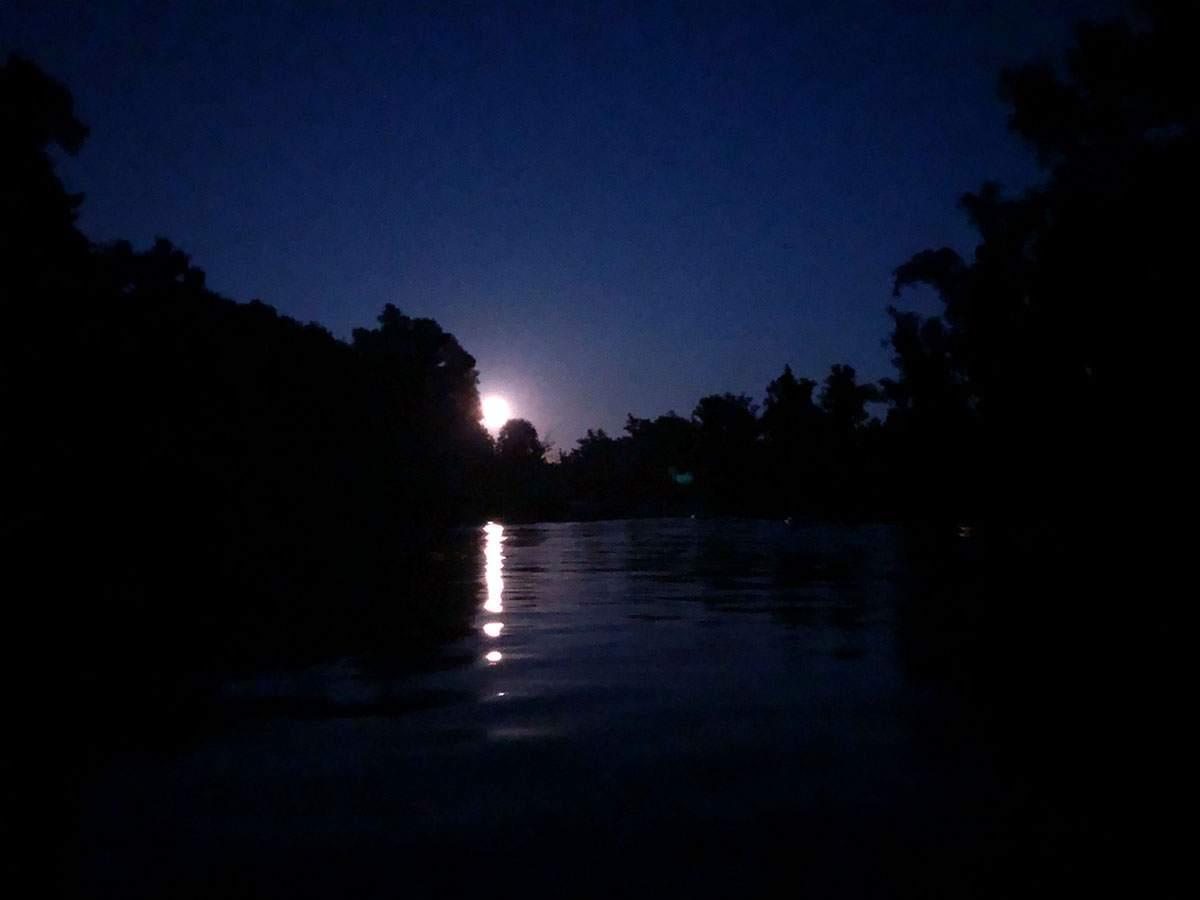 Full moon kayaking in de Biesbosch