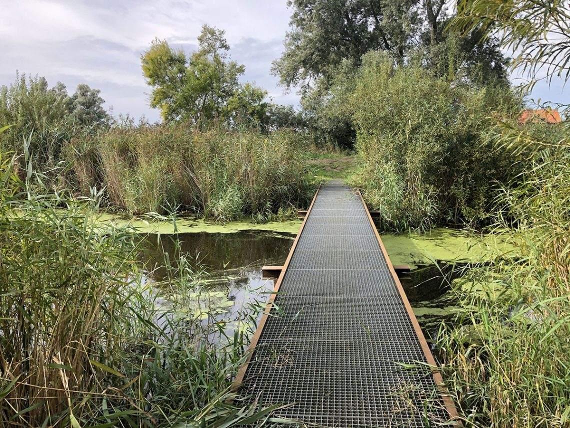 Wandelen in de Biesbosch