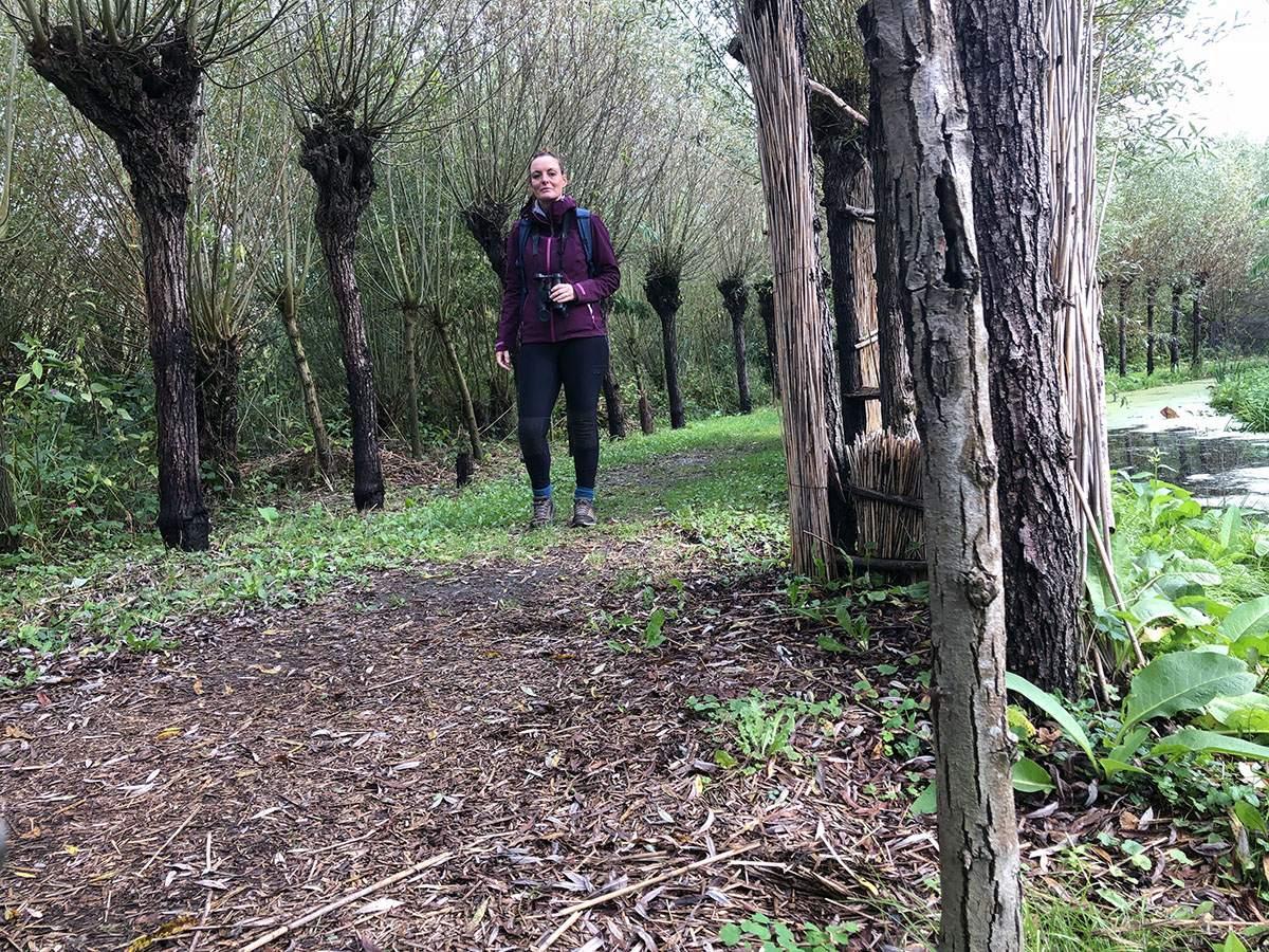 Walking in the Biesbosch
