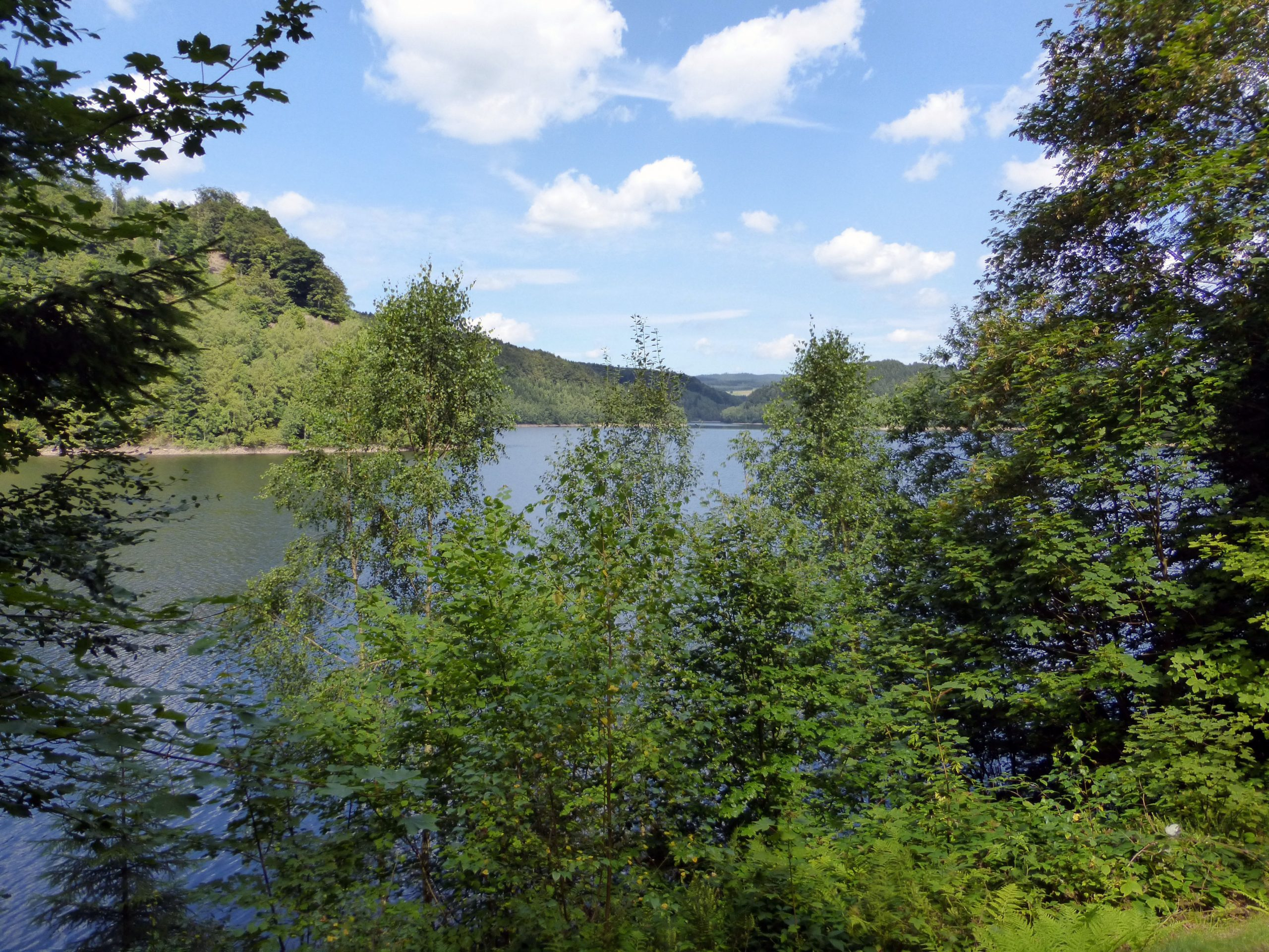 A quiet section of the Bostalsee in Saarland Germany
