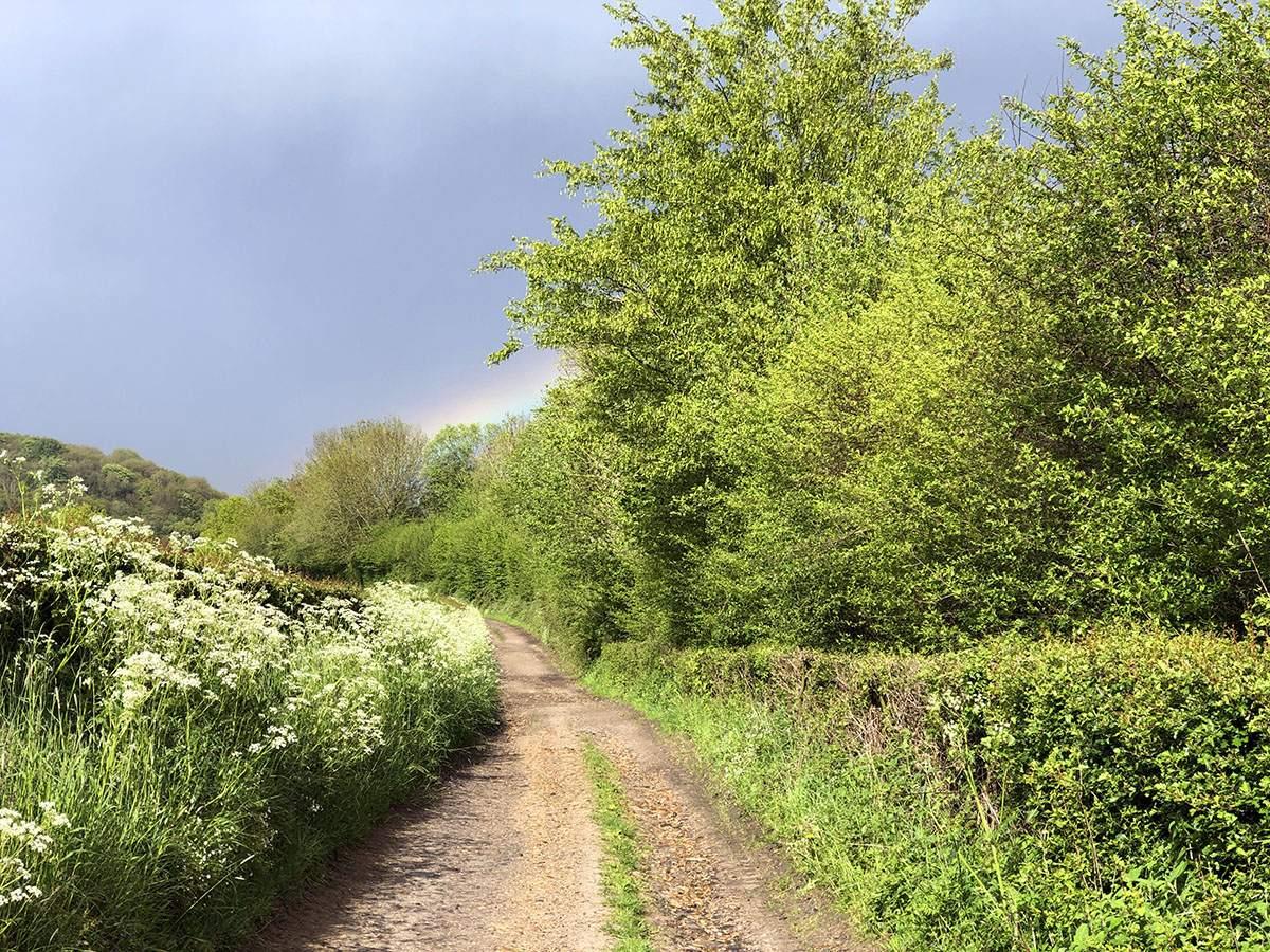 Regenboog op de Dutch Mountain Trail