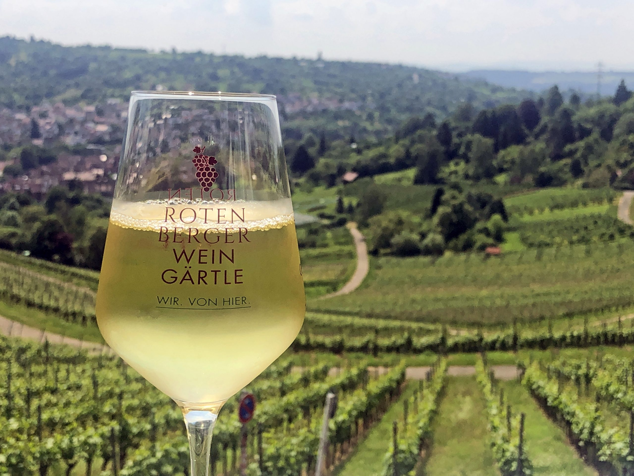 Wijn proeven in het Remstal
