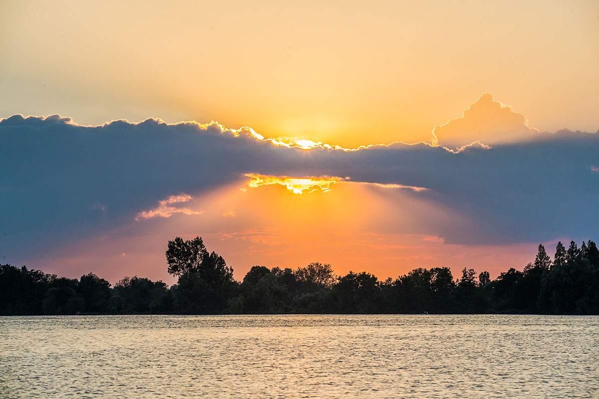 Wild Aalsmeer